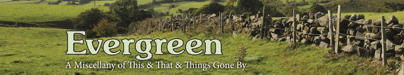 Evergreen Banner